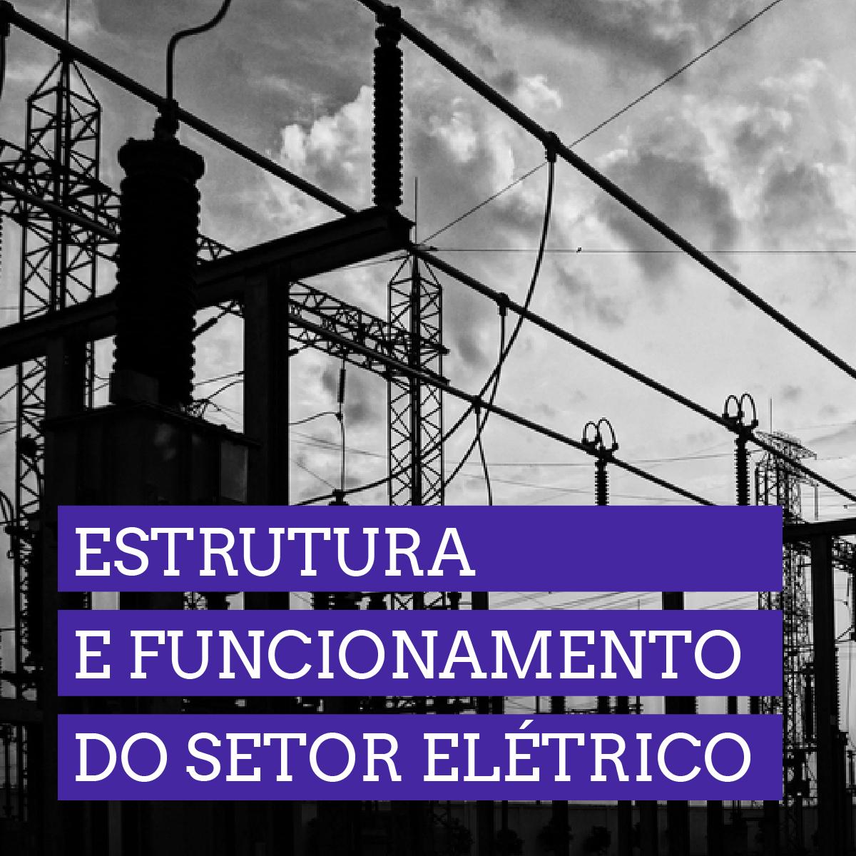 Estrutura e Funcionamento do Setor Elétrico