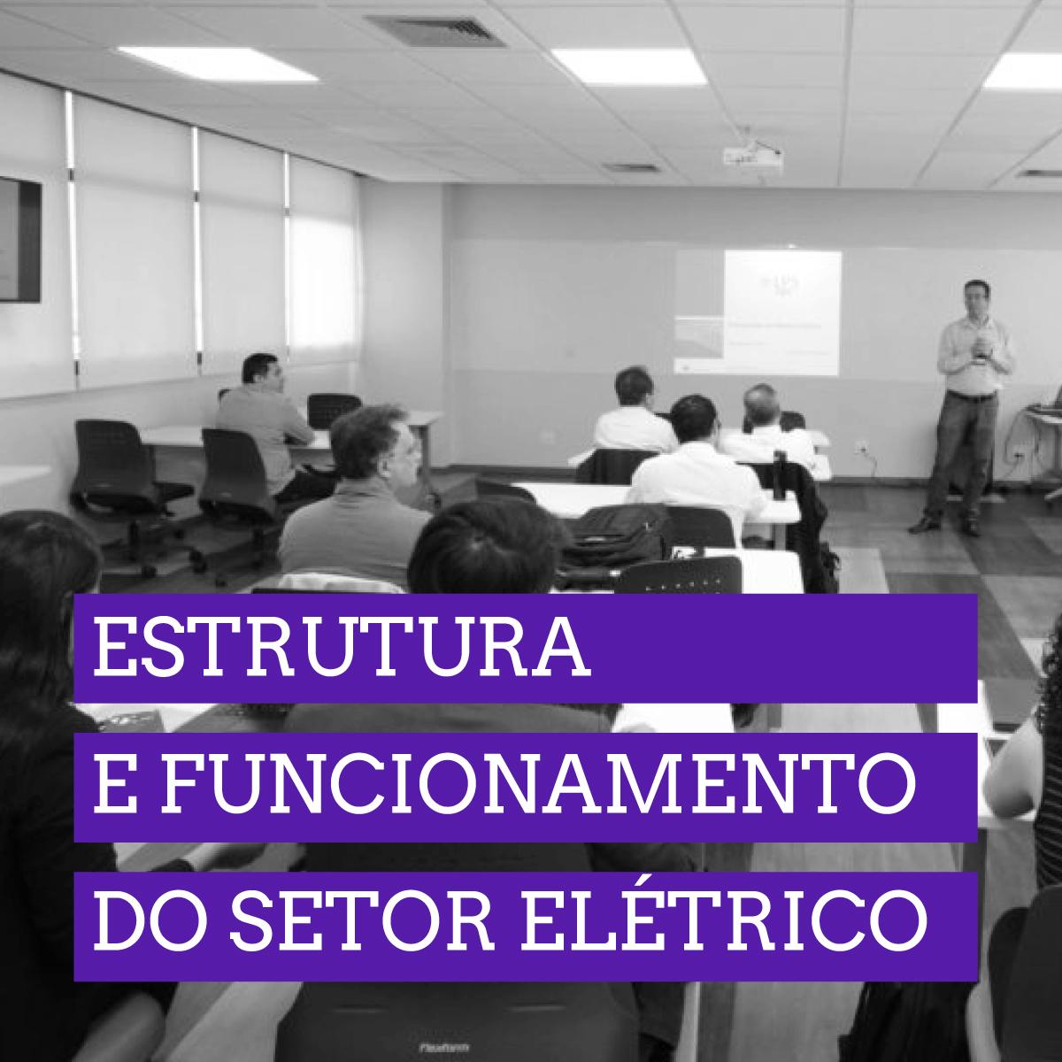 Estrutura e funcionamento do setor elétrico - presencial